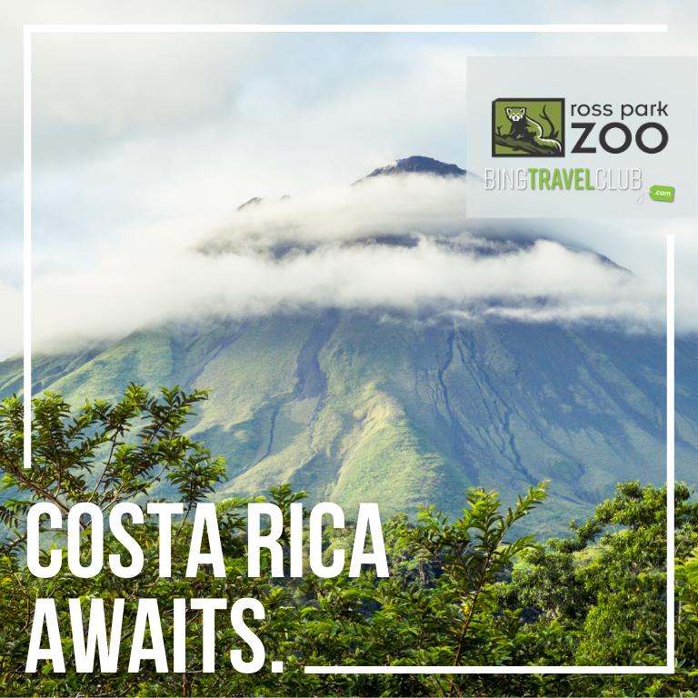Costa Rica Awaits